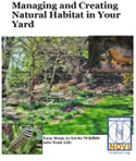 Managing and Creating Natural Habitat in Your Yard