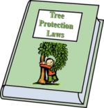 Clip Art - Tree Protection Laws Book