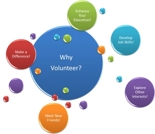 Why volunteer graphic