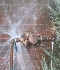 Failed Backflow Preventer