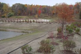 View of Storm water control basin with landscaping around it.